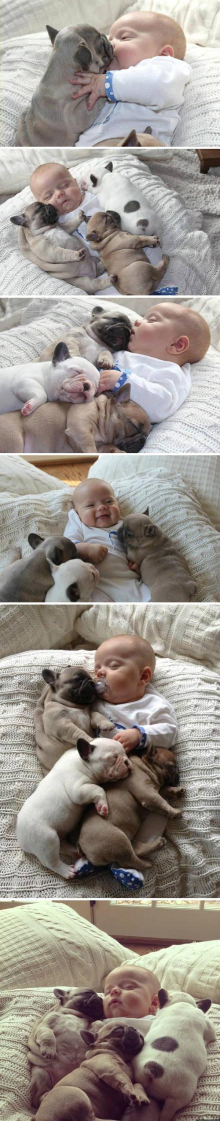 不是随便放个宝宝都能这么融合在它们之中的呀!