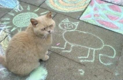 尼玛……谁把老子画的这么难看……次奥……!