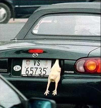 车后裸尸,速来围观