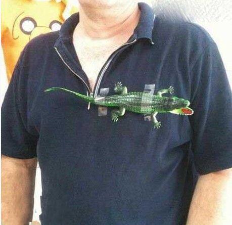 新买的鳄鱼T恤~