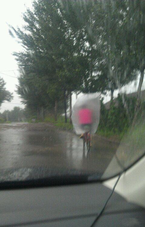 下雨天骑车好方法~