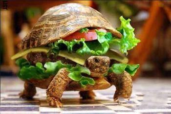 嘿,刚才是哪位跟我要的蔬菜三明治?