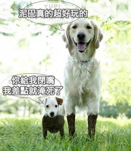 话说有一天姚明和小四去玩泥巴。。。