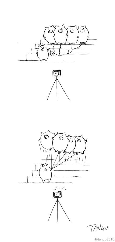 小猪要拍气球照,一,二,三,跳。。。好有爱(via@tango2010)