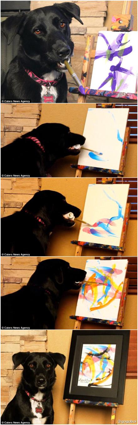当Henderson夫妇把2岁的Arbor领回家的时候,完全不知道他是个绘画天才。二老发现他太聪明了,于是决定试着教他画画。Arbor很快就学会了用嘴叼画笔,调整画布,并画出生动又美丽的线条。如今他已经是一笔在手,如握春风了。他还在电视节目里展展现技艺为动物保护机构筹款,有些作品能卖到300英镑一幅。