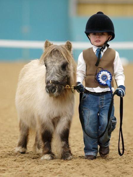 大人骑大马,小朋友骑小马