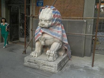 威武的狮子瞬间变身成狼外婆