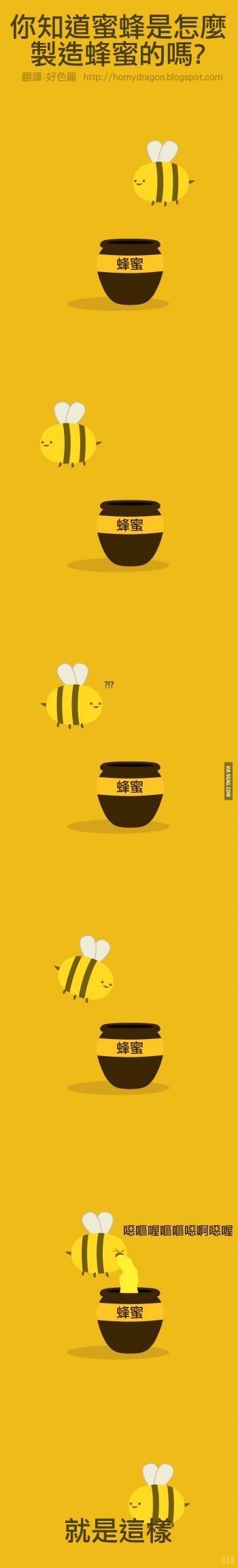 科普小知识,蜂蜜是怎么造出来的。