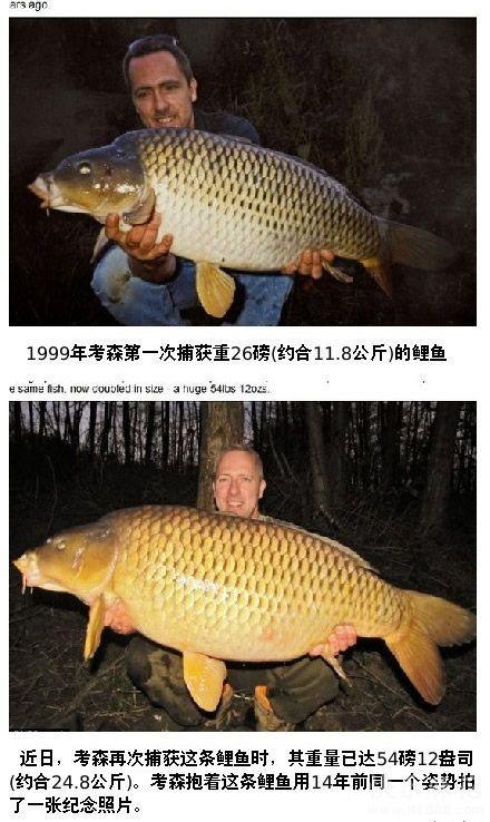 穿越时空钓到你 这是一个钓鱼爱好者和一条鲤鱼的甜蜜故事 1999年,这位仁兄在湖边钓到一条11.8公斤的鲤鱼,鲤鱼兄身体一侧有一个独特的秃斑,14年后的一天,他闲着没事,来到之前钓到鲤鱼兄的地方,一竿下去,嘿!又把鲤鱼兄给钓上来了!这回它已近25公斤啦!这次他仍然放它走了。