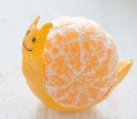 橘子蜗牛,好萌