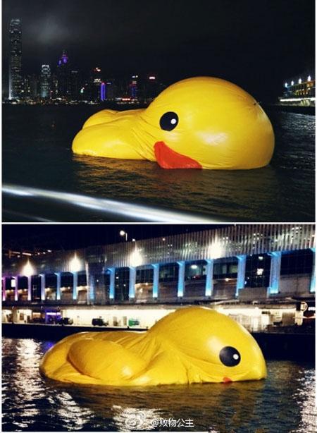 人生就象大黄鸭,就算你一时风光无限,不可一世,周游世界,众人倾羡,霸气如神仙,也总有瘪下去的一天。如果你自己肚子里没什么货,全靠吹,那被打败就是分分钟的事。大黄鸭临终绝笔