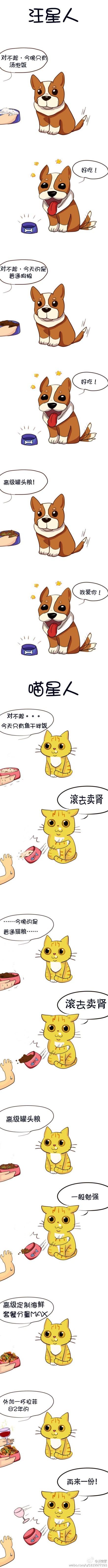 狗不嫌家贫,猫不嫌家富…… 「via淡定冢 」