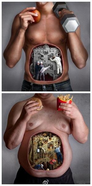 作井然有序运转正常的肠胃的主人。。。