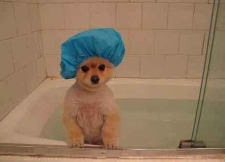 美男子出浴图!