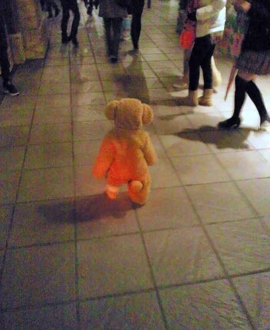 还以为是什么毛绒玩具掉在街上,原来是人家把自己的宝宝打扮成这样上街了...……(via:苏景锋)