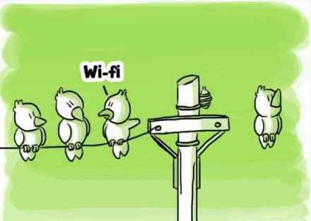 那家伙有wifi~