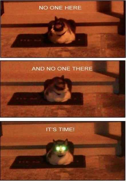 这边没人,那边也没人,嗯!是发射激光的时候了~