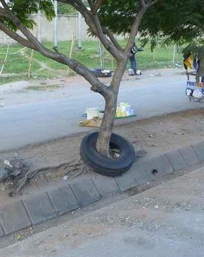 这轮胎被栓了多少年了?