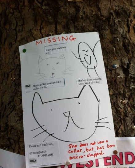 英国人的寻猫启示...亮瞎了...