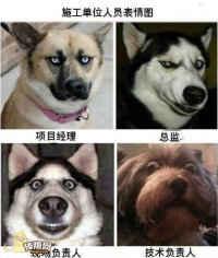 工地领导的表情……