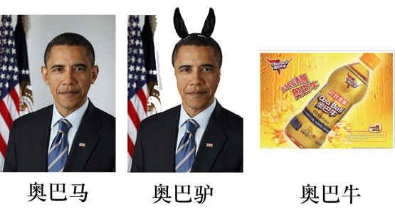 奥巴马的一种进化形式