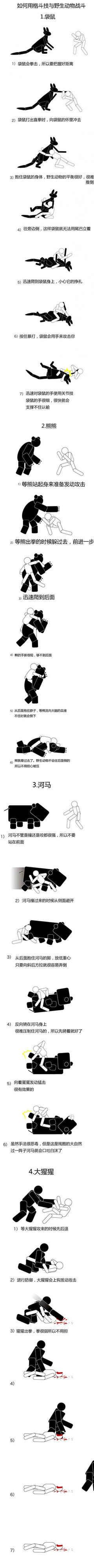 如何用格斗技和野生动物战斗~ 笑喷了 ~