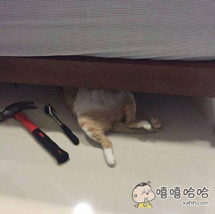 偷拍正在修床的维修工