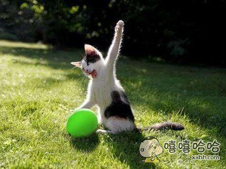 看我的大力神掌!