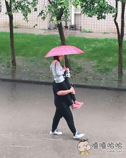 下雨了就不要出来虐狗了