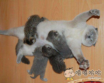一群熊孩子的背后,都有一个生无可恋的妈
