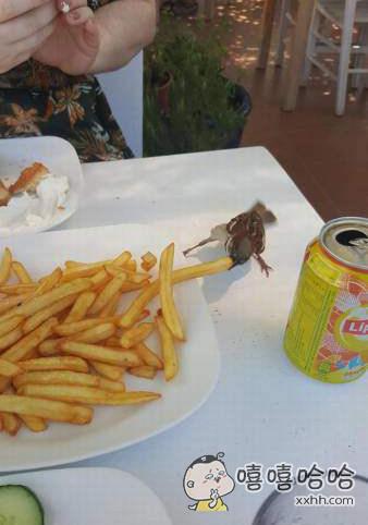 小鸟饿了。。。