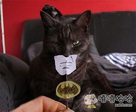 没错,我就是传说中的蝙蝠侠的真身!!!!