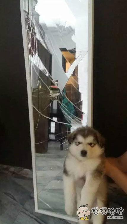 是镜子先动手的!