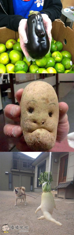 不要太过分,有时候你们这些做蔬菜的,也需要注意自己的身份!!
