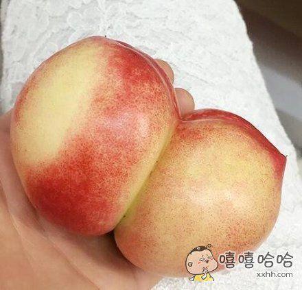 太不科学了,这桃子是怎么长的