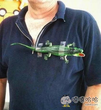 老公说喜欢鳄鱼的衣服,这还不好说