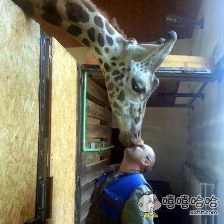 亲吻。。。