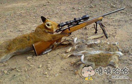 狐狸都用上高科技了