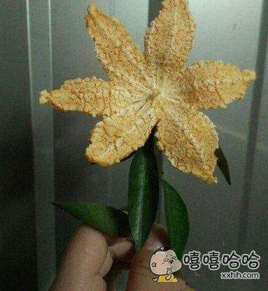 这也应该叫橘花?