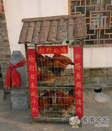 公鸡也有了自己的官府。