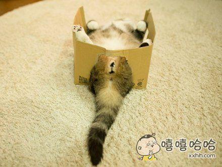 使用盒子的正确姿势~