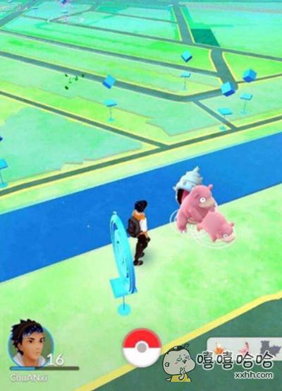 玩个pokemon go都要吃狗粮么