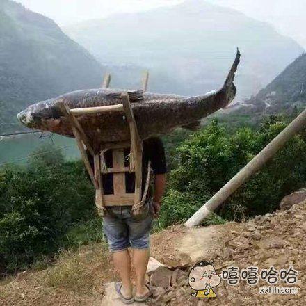 背着大鱼去旅行,伦家不用花钱买饭了!