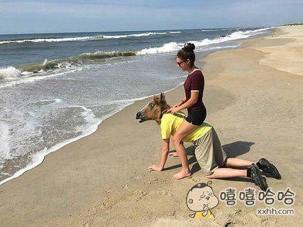 老婆说想骑马去看海