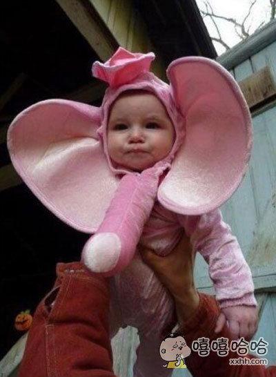 老婆给女儿买了个大象头套。。。。可我总觉得哪里怪怪的。。。