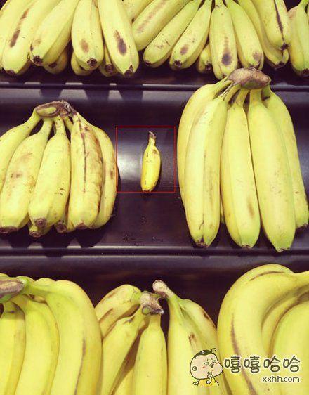 一个被孤立的香蕉
