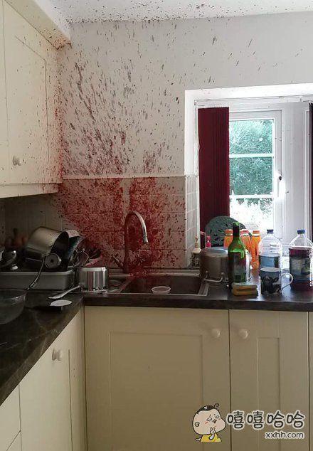 一英国小伙伴的妈妈做果酱结果失败了,这是现场发回来的报道,真的不是……