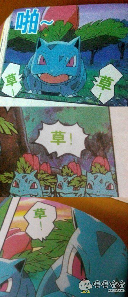 妙蛙草大概是世界上最没礼貌的神奇宝贝了