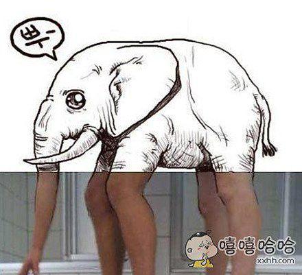 这就是传说中胖子的大象腿。