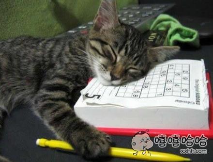工作累了就要稍微休息下